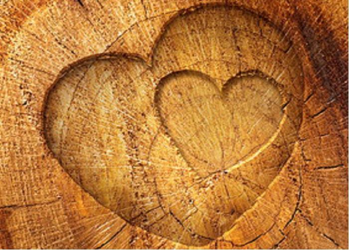 MObelfUse Aus Holz Hersteller ~ Holz Carports von holz carport com